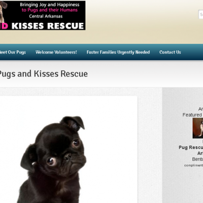 Pugs and Kisses Rescue