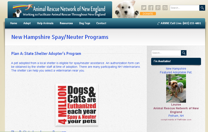 Animal Rescue Network of New England (ARNNE)