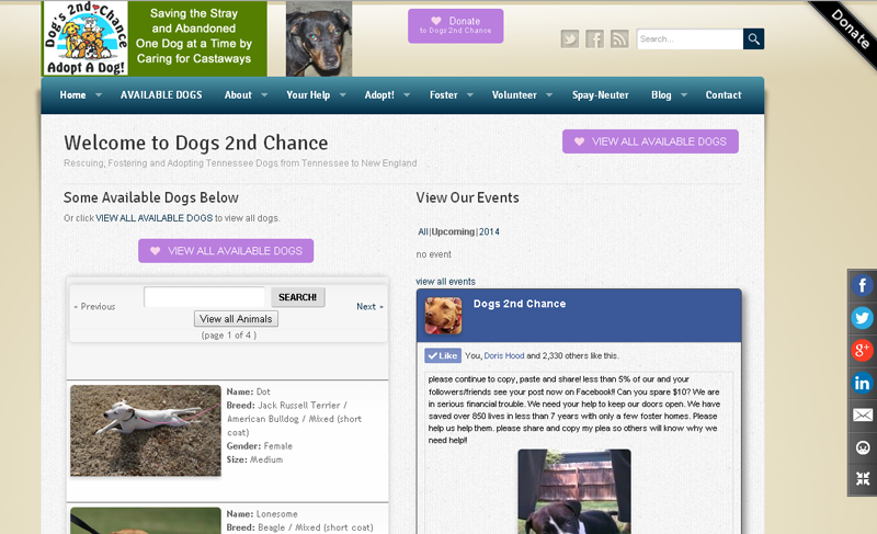 Dogs 2nd Chance Tennessee