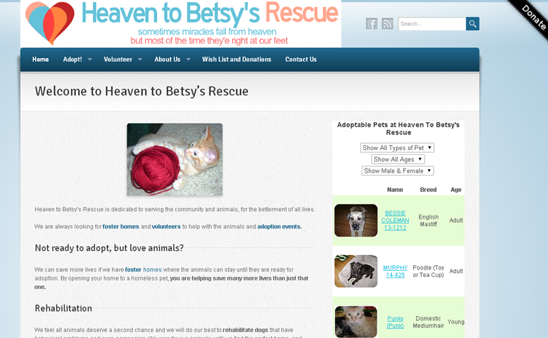 Heavens to Betsy's Rescue