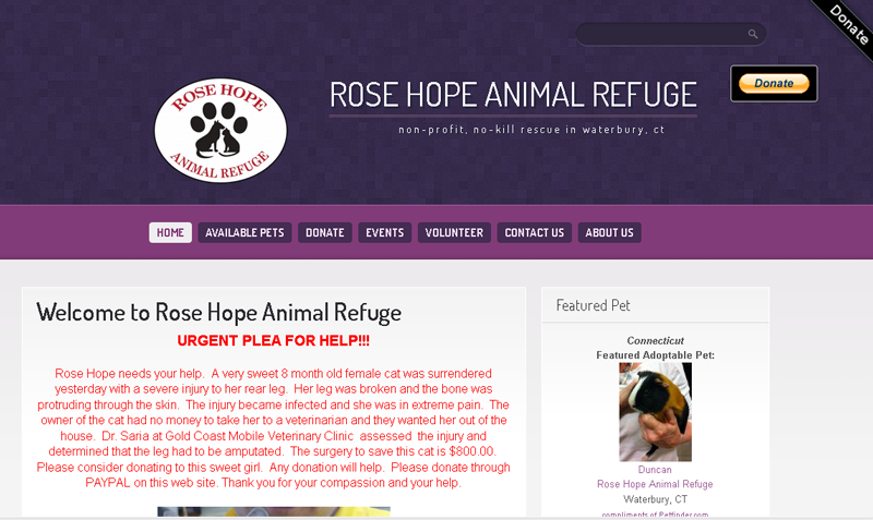 Rose Hope Cat Rescue